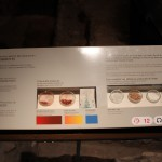Dyes & Fixers of vegetable and mineral (pastel, saffron, herbs, alum, bran, lime, iron oxide, Woad) origin: Materials for clothes washing and dyeing  :Roman Ruins of Barcino the original Barcelona